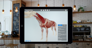 easyanatomy-now-on-ipad
